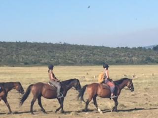 horse-ride on Sarfai