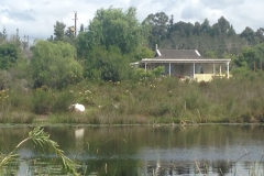 cottage 1- Accommodation, Gouna Forest, Knysna