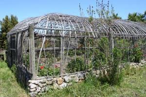detouring in the fully organic vegetable garden...