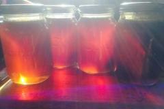 Tree Spirit Organic Honey