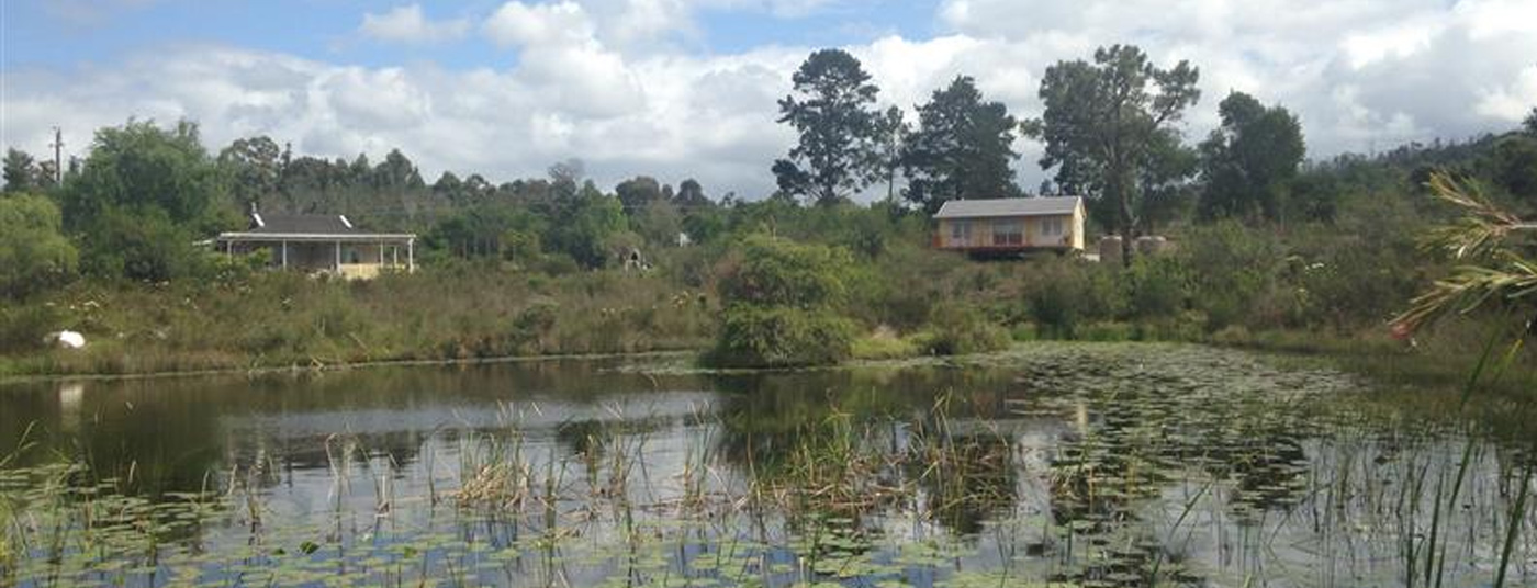 Two Beautiful Rental Cottages, 